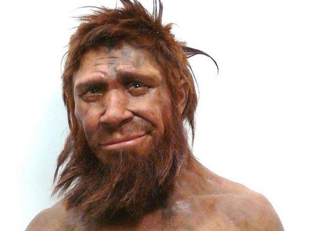 1497037908_homo-sapiens